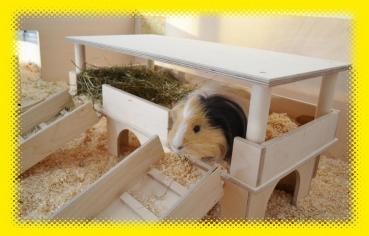 lazzyys kuschelshop lazzyy de luxe kuschelsachen meerschweinchen kaninchen co. Black Bedroom Furniture Sets. Home Design Ideas